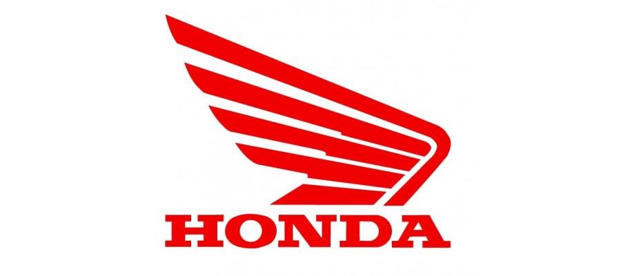 Barracuda Honda