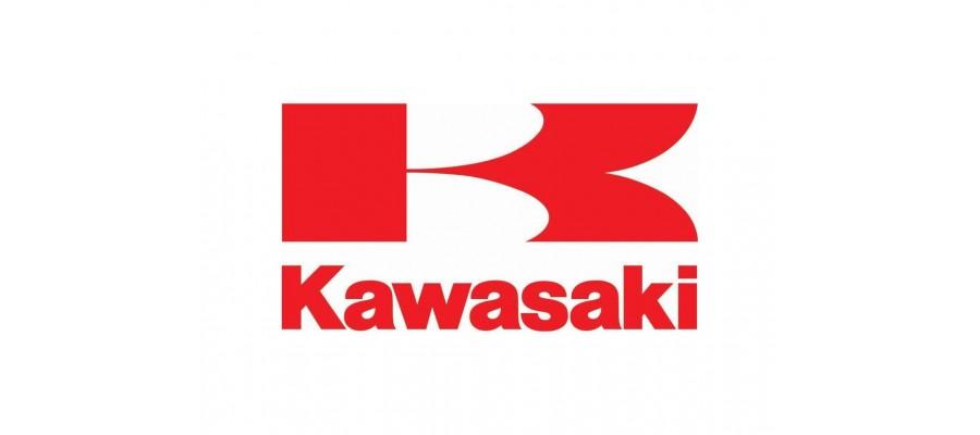 Kawasaki Rafale
