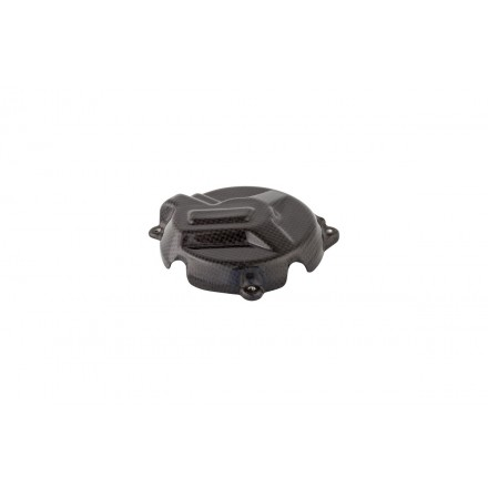 Bmw S 1000 R Tapa Alternador En Carbono