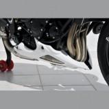 STREET TRIPLE 675 12' QUILLA MOTOR ERMAX
