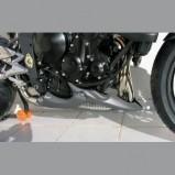 STREET TRIPLE 675 R 09'-11' QUILLA MOTOR ERMAX