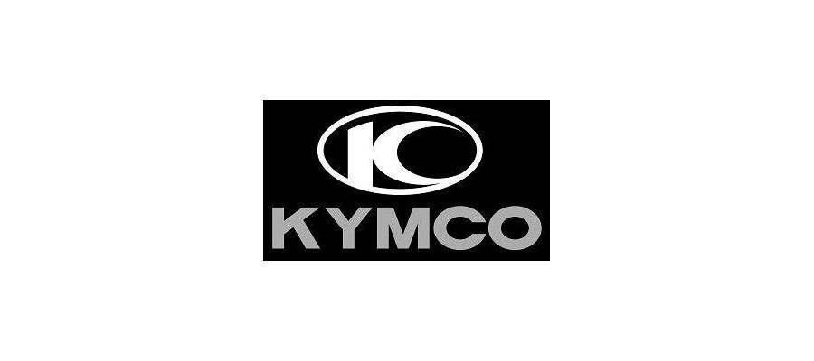 KYMCO PASTILLAS SBS