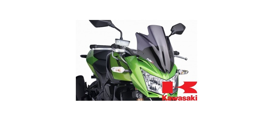 Kawasaki New Generation Puig