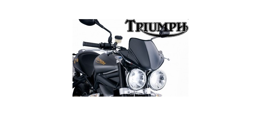Triumph New Generation Puig