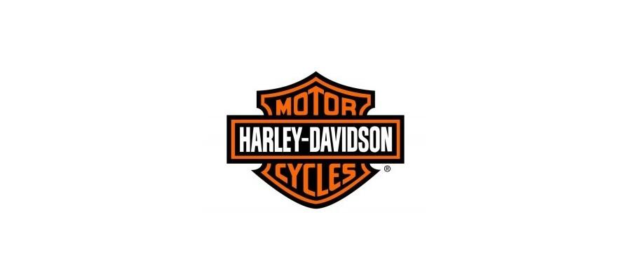 Retrovisores Harley Davidson