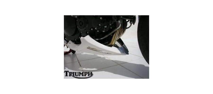 Triumph Quillas Ermax